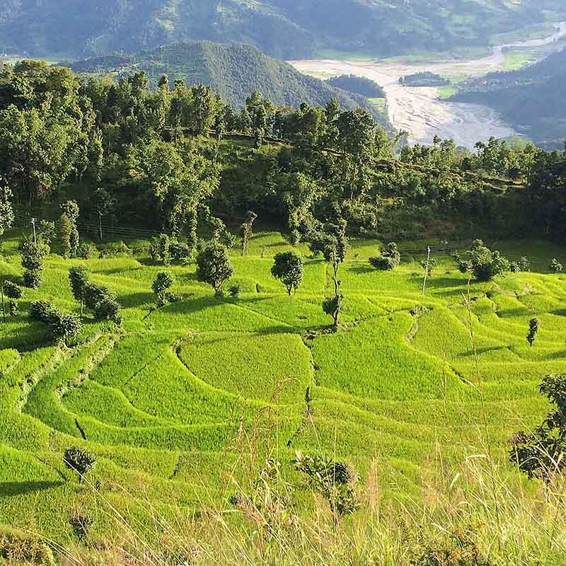 Pokhara randonnée trek Népal - Apogée Voyages