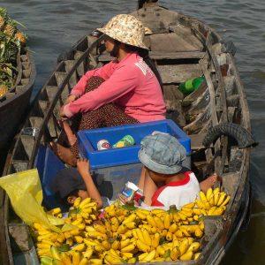 Découverte Mekong Vietnam - Apogée Voyages