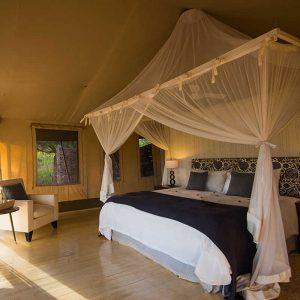 Hôtel- Santuary-Swala- Tanzanie - Apogée Voyages
