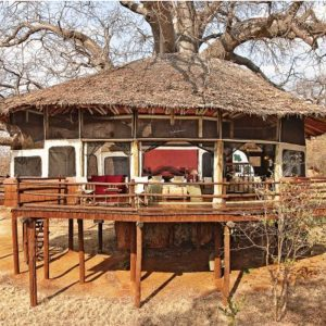 Hôtel Tarangire Treetops Tanzanie - Apogée Voyages