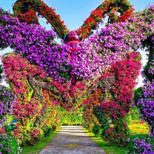 Jardin miracle Dubai - Apogée Voyages
