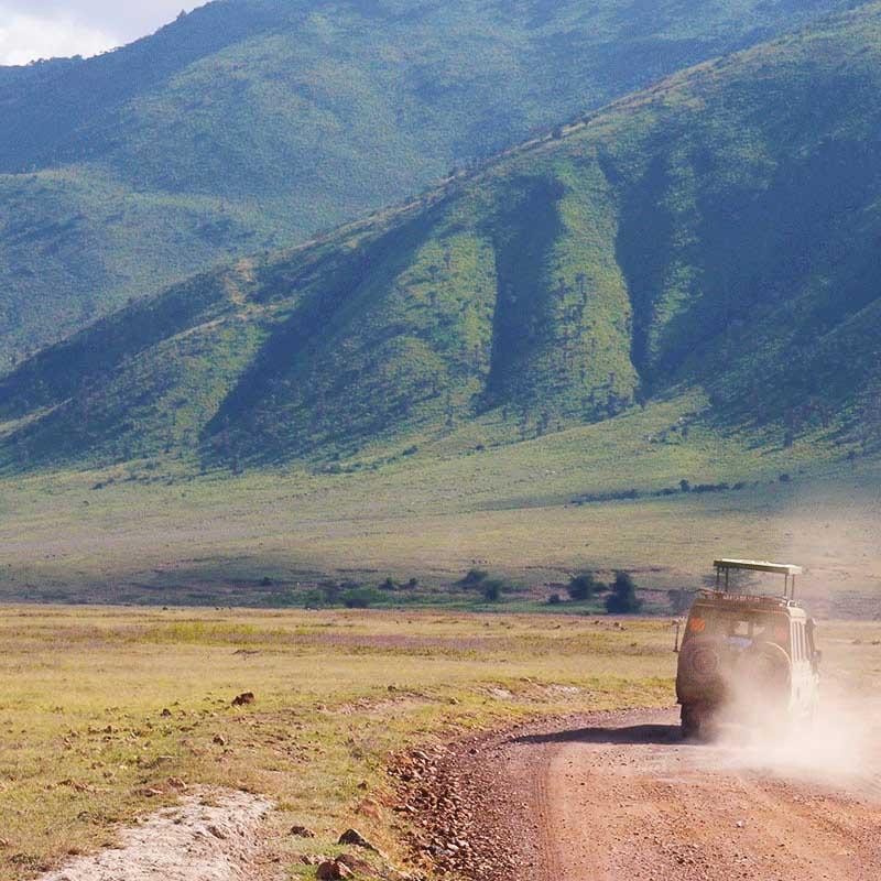 Safaris cratère Ngorongoro et lac Manyara - Apogée Voyages