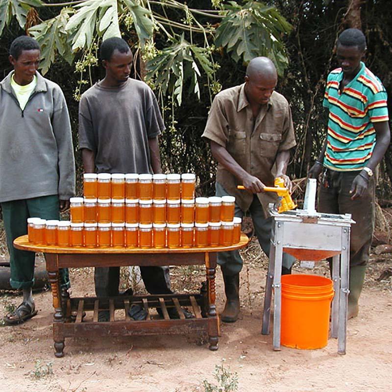 Protection abeilles Tanzanie - Apogée Voyages