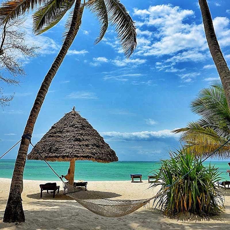 Pongwe Beach Hotel - Zanzibar - Apogée Voyages